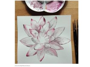 Labri, vodna lilija2